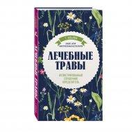 Книга «Лечебные травы. Иллюстрированный справочник-определитель».