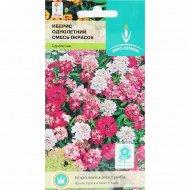 Семена «Иберис» смесь окрасок, 0.25 г.