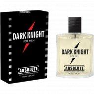 Туалетная вода мужская «Absolutet» Dark Knight, 100 мл.