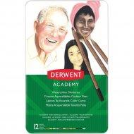 Набор акварельных карандашей «Derwent» 12 цветов, 2300386