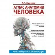 Книга «Атлас анатомии человека. Учебное пособие для студентов».
