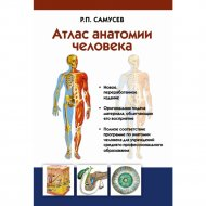 Книга «Атлас анатомии человека».