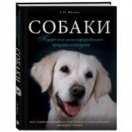 Книга «Собаки. Подарочная иллюстрированная энциклопедия».