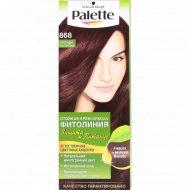 Краска для волос «Palette» фитолиния, 868 шоколадно-каштановый.