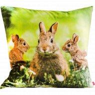 Наволочка декоративная «Home&You» Rabbitrio, 54442-ZIE-P0404-WN
