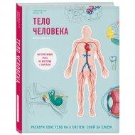 Книга «Тело человека. Интерактивный атлас по анатомии с вырубкой».