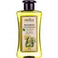 Шампунь для окрашеных волос «Melica» с экстрактом оливы, 300 мл