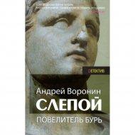 Книга «Слепой. Повелитель бурь» Воронин А.