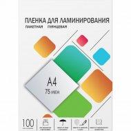 Пленка для ламинирования «Office Kit» PLP10023, 100 шт