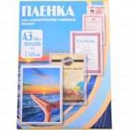 Пленка для ламинирования «Office Kit» PLP10920, 100 шт