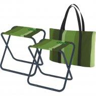 Комплект складной мебели «Zagorod» N 201, classic green, 2 шт
