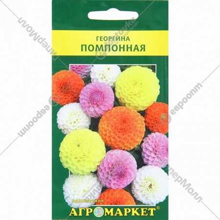 Семена «Помпонной» георгины, 0.5 г.