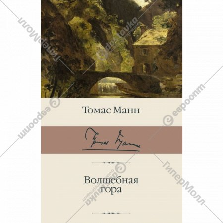 Книга «Волшебная гора».