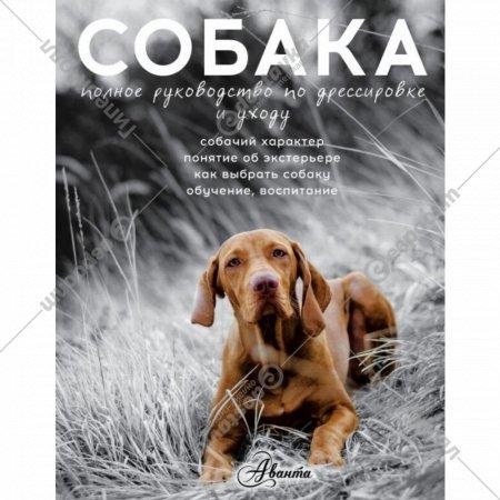 Книга «Собака. Полное руководство по дрессировке и уходу».