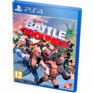 Игра для консоли «Take Interactive» WWE 2K Battlegrounds, 1CSC20004848