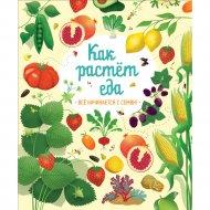 Книга «Как растет еда».