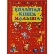 Книга «Большая книга малыша» Резько И.В.