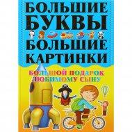 Книга «Первая книга мальчика.Большой подарок любимому сыну» 0+.