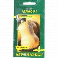 Семена тыквы «Атлас F1» 5 шт.