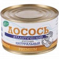 Консервы рыбные «Лосось» атлантический, кусочки, 230 г