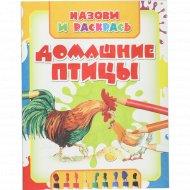 Раскраска «Домашние птицы» Волкова В. Н.