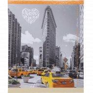 Тетрадь «Нью-Йорк» 48 листов.