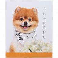 Тетрадь «Собака» 48 листов.