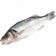 Рыба охлажденная «Сибас» с головой, непотрошеная, 1 кг., фасовка 0.4-0.6 кг