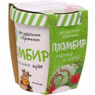 Мороженое «Из молочного края» с ароматом мяты и малины, 270 г.