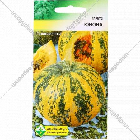 Семена тыквы «Юнона» 10 шт.