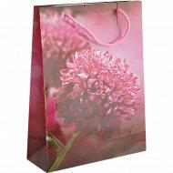 Пакет подарочный «Цветочная фантазия» 30х23 см, в ассортименте.