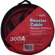 Провода для запуска двигателя в сумке 300 A RR300.