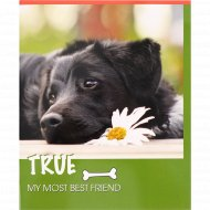 Тетрадь «Мой друг-собака» А5, 48 л